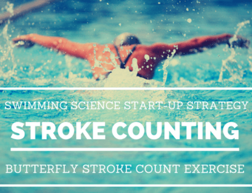 Fly Stroke Counting Exercise