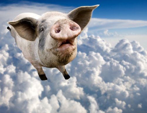 Olympians Are Not Flying Pigs!